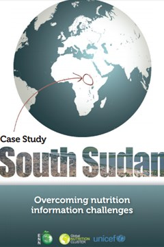 South Sudan Case Study: Overcoming nutrition information challenges