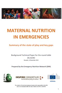 Maternal Nutrition in Emergencies: Summary of the state of play and key gaps (2013)