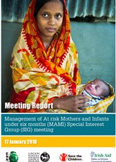 Meeting Report: Management of At risk Mothers and Infants under six months (MAMI) Special Interest Group (SIG) meeting