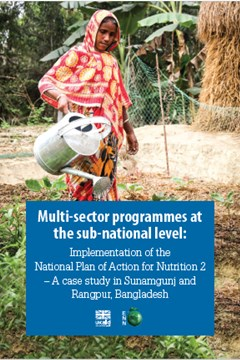 Multi-sector programmes at  the sub-national level: Implementation of the  National Plan of Action for Nutrition 2  – A case study in Sunamgunj and  Rangpur, Bangladesh