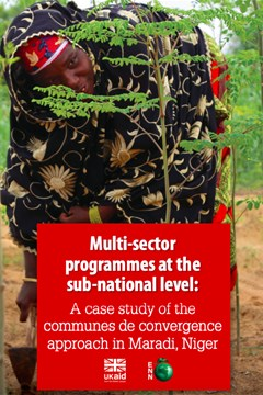 Multi-sector programmes at the sub-national level: A case study of the communes de convergence approach in Maradi, Niger