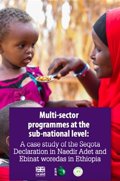 Multi-sector programmes at the sub-national level: A case study of the Seqota Declaration in Naedir Adet and Ebinat woredas in Ethiopia