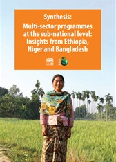 Synthesis: Multi-sector programmes at the sub-national level: Insights from Ethiopia, Niger and Bangladesh
