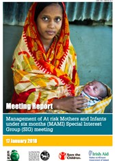 Meeting Report: Management of At risk Mothers and Infants under six months (MAMI) Special Interest Group (SIG) meeting 2018
