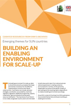 Emerging themes for SUN Countries: Building an enabling environment for scale-up