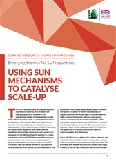 Emerging themes for SUN countries: Using SUN mechanisms to catalyse scale-up