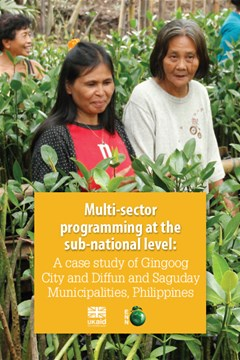 Multi-sector programming at the sub-national level: A case study of Gingoog City and Diffun and Saguday Municipalities, Philippines