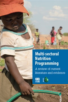Multi-sectoral Nutrition Programming: A review of current literature and evidence