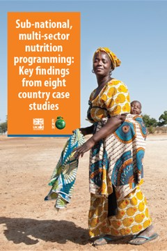 Sub-national, multi-sector nutrition programming: Key findings from eight country case studies