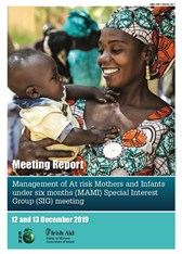 Management of At risk Mothers and Infants under six months (MAMI) Special Interest Group (SIG) meeting