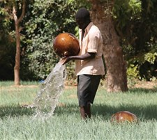 A man showering his plot of onions on the Dogon Plateau