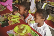 The Brazilian school feeding programme follows nutritional guidelines in order to meet the minimum needs of students