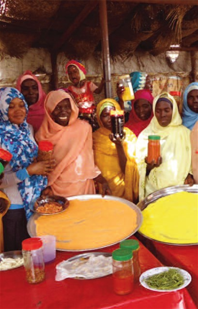 Participatory food preservation sessions in Garbia, Sudan