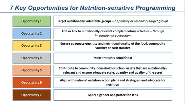 What does nutrition-sensitive programming mean for WFP? | ENN