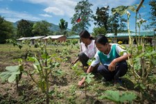 Women cultivate land next toa school, where they will grow crops tobe used in school meals, Mindanao, Philippines
