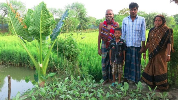 A family that was supported to develop an integrated farming, including vegetables, Aman rice and sweet water aquaculture, 2016