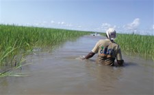 Anthony, a SET officer, on his way to a sampled village